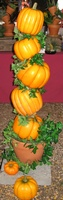 Pumpkins-Large Plant Stand - To Order the Plant Stand: Click on ''Highlights'' then ''Plant Stands''