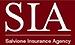 Salvione Insurance Agency Inc.