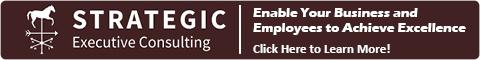 Strategic Executive Consulting LLC