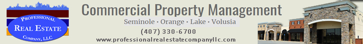 Professional Real Estate Company