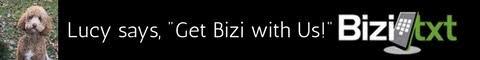 Bizitxt Text Marketing