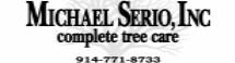 Michael Serio, Inc.