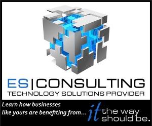 E S Consulting Inc