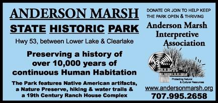 Anderson Marsh Interpretive Association