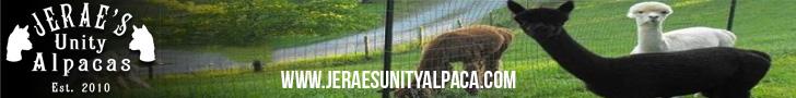 Jerae's Unity Alpacas
