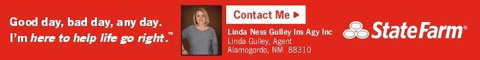 State Farm Insurance - Linda Ness Gulley