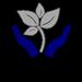 Envision Life - Medicine Hat