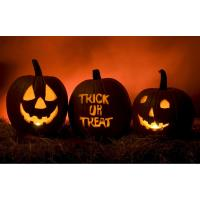 2nd Annual Pequot Lakes Halloween Event