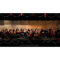 "CANCELED - HSO Spring Concert Series - ""A Tribute to Beethoven"""