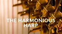 Lakes Area Music Festival The Harmonious Harp *POSTPONED*