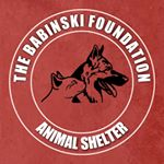 The Babinski Foundation