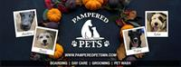 Pampered Pets Grooming