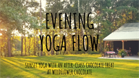 Evening Flow Yoga