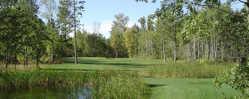 Wildwedge Golf, Mini Golf, Maze, RV Park