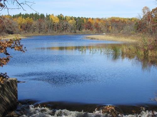 Mayo Lake Park Reserve