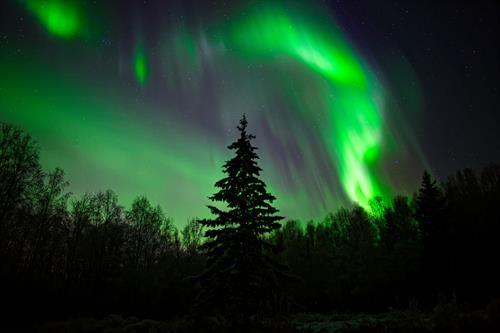 Gallery Image aurora-in-alaska-F2AGHRL.jpg