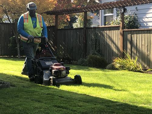 AmaZing Lawncare