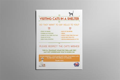 Visiting a cat in the shelter setting flyer. This was designed to educate visitors in cat body language when a cat is in a kennel. The goal is to help cats feel safe and comfortable while people visit them at the shelter.