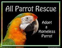 APR All Parrot Rescue