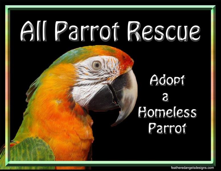 APR All Parrot Rescue