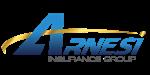 Arnesi Insurance Group