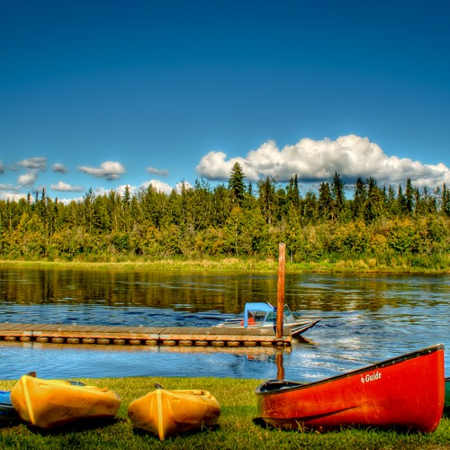 Canoes lined up along the Chena River