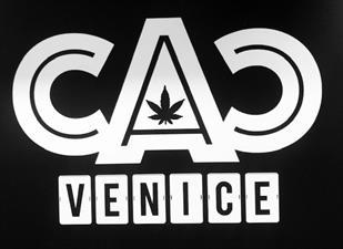 CAC VENICE