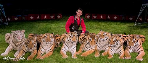Tiger Adventures with Ryan Holder.