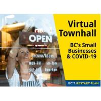 Virtual Townhall on Supporting Small Businesses