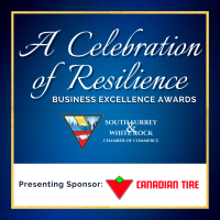 A Celebration of Resilience - Business Excellence Awards