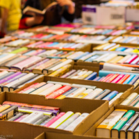 Friends of Ilsley Library Book sale