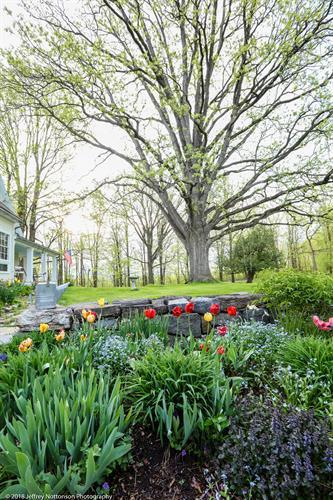 Whitford House Flower Garden & Oak Tree