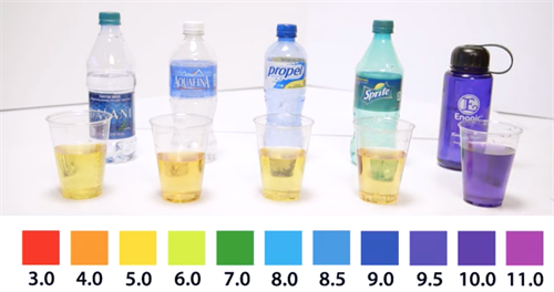 Alkaline and Acidity Test