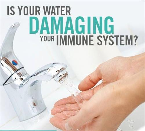 Is your water damaging your immune system?