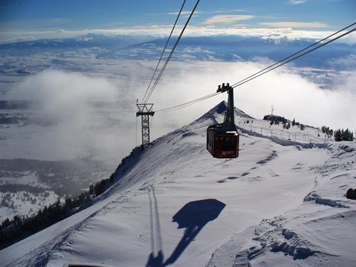 Skiing / Snowboarding Jackson Hole, WY