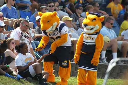 Averett University Homecoming