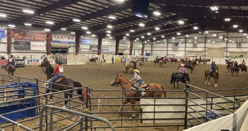 Rodeo in Arena
