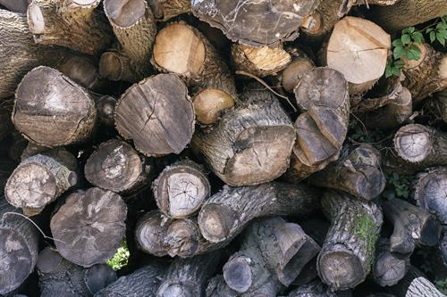 Offering Premium Kiln-Dried Firewood delivered and stacked year-round.