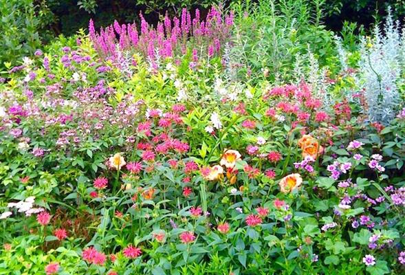 Green Edens Horticultural Services, LLC