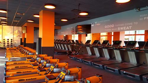 Orange Theory Fitness - West Loop