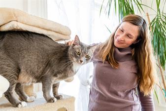 Purrfect Pawz N Palz Cat Sitting LLC