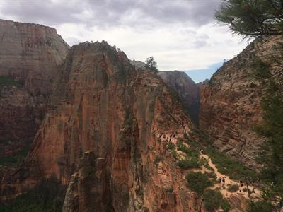 We clean many of the national parks each year. Angels Landing Zion National Park.