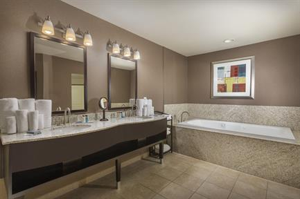 Executive Suite Bath Room