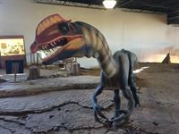 Dilophosaurus replica