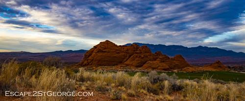 www.Escape2StGeorge.com Vacation Homes