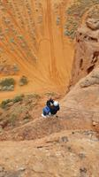 Add on a Zipline/Repel to your tour