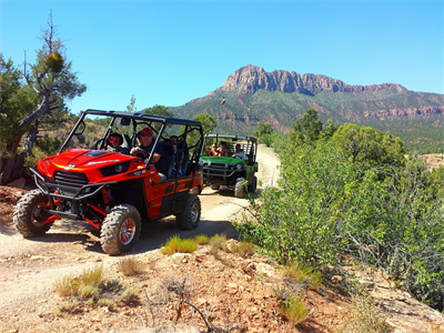 Finest Zion UTV Tours