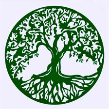 Earth's Jade Natural Upkeeping