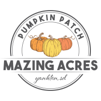 Hot Air Balloon Lift Off at Mazing Acres Pumpkin Patch