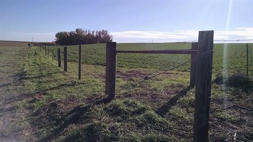 Gallery Image fencing6.jpg